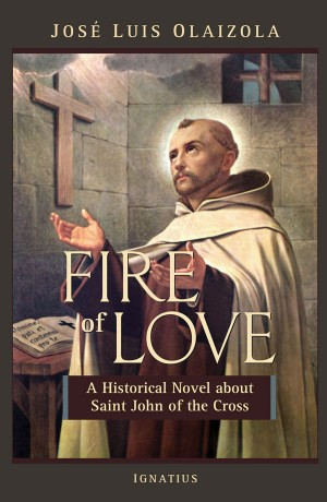 Cover for Fire of Love
