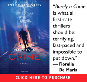 Barely A Crime (novel)